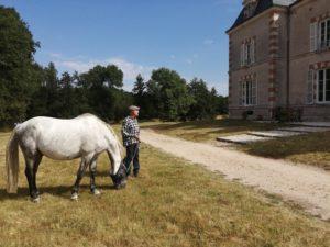 Le Château du Cosson Sur les berges du Cosson, une propriété privée rénovée pour vos retrouvailles.